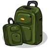 a 2-Piece Luggage Set