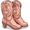 some Cowgirl Boots
